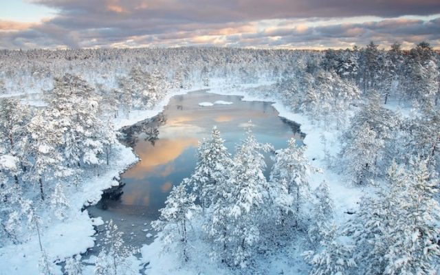 estonia winter lake