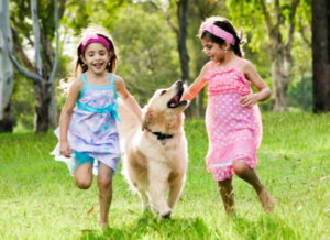 kids running with dog